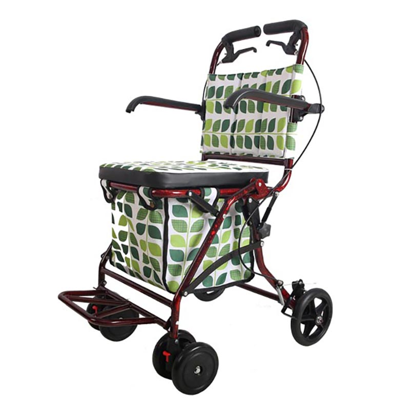 Companion Shopper LYL Mobility Scooter